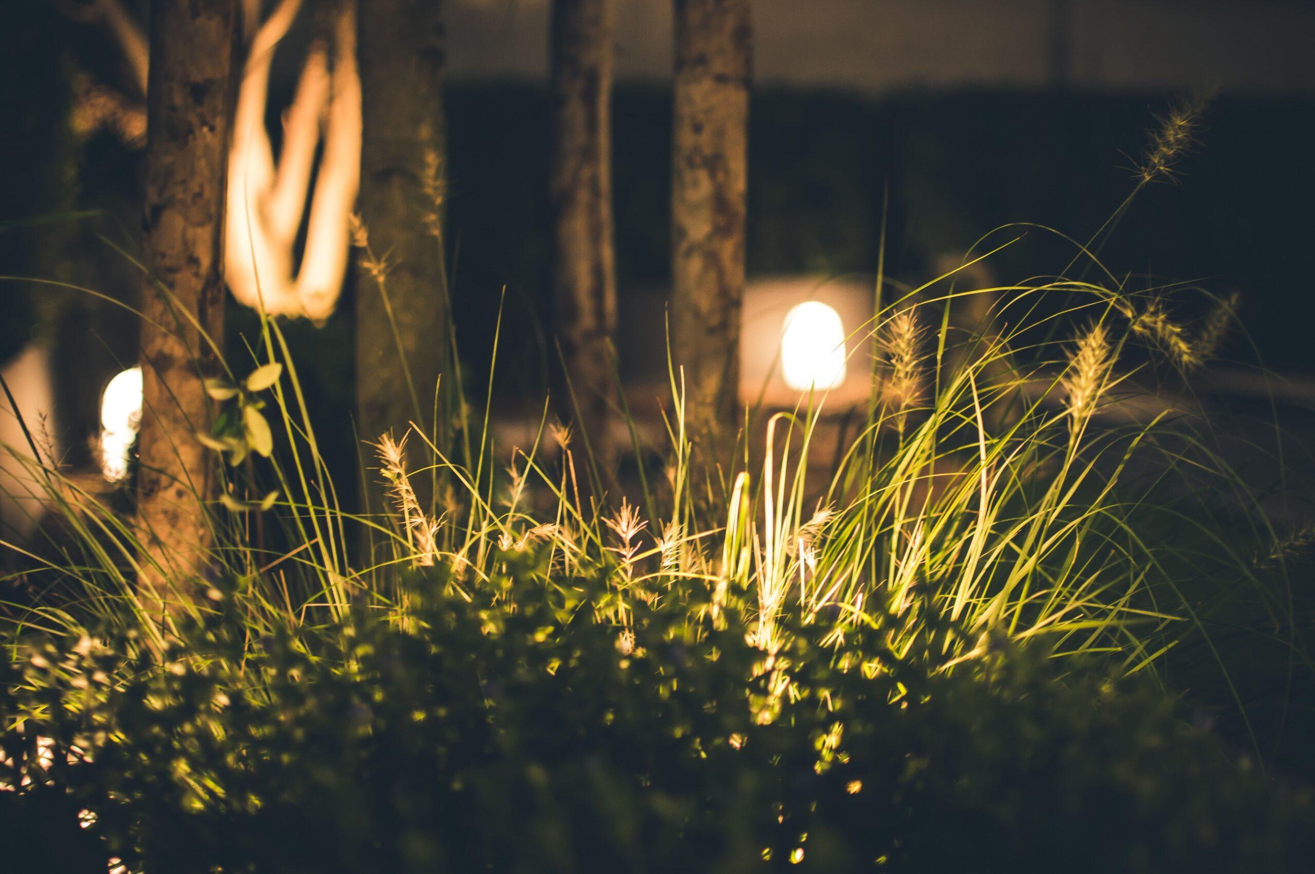 Освітлення в сучасному ландшафтному дизайні