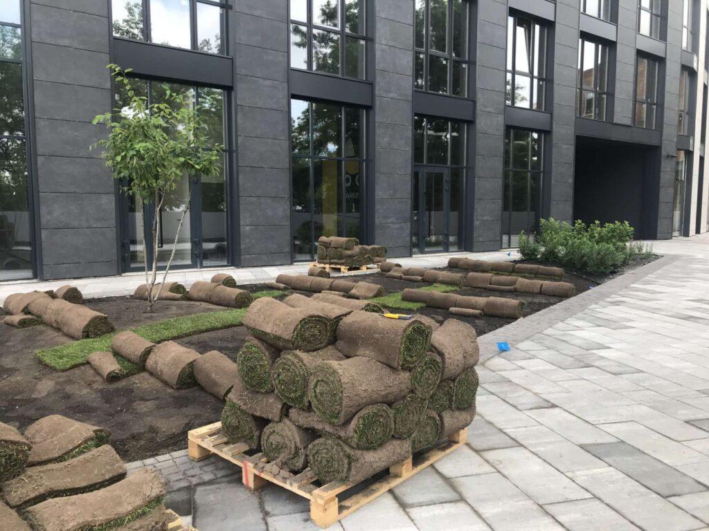 Рулонний газон в ландшафтному дизайні